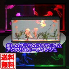 【送料無料】TV放映で大反響!!!癒しのクラゲのアクアリウム【送料無料】 アクアジェリーフィッ...
