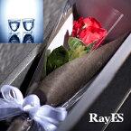 [フラワー付ギフト] RayES/レイエス ダブルウォールグラス RDS-004 200ml バラ・プリザーブドフラワー付[2個入り・ラッピング・カード] 【あす楽】【ギフト】【結婚祝い】【誕生日プレゼント】【楽ギフ_包装選択】
