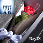 [フラワー付ギフト] RayES/レイエス ダブルウォールグラス RDS-002 300ml バラ・プリザーブドフラワー付[2個入り・ラッピング・カード] 【あす楽】【ギフト】【結婚祝い】【誕生日プレゼント】【退職祝い】【楽ギフ_包装選択】