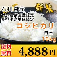 石川県産こしひかり10kg