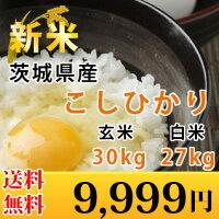 茨城県産こしひかり30kg
