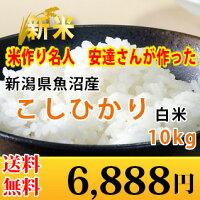 新潟県魚沼産コシヒカリ10kg
