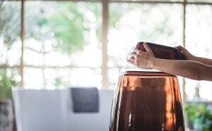 グラスカGLASSCAバススツールウォッシュボールセット日本製風呂椅子ふろいすフロイスバスバスチェア腰かけ湯おけ【あす楽対応】【ポイント10倍】【送料無料】【smtb-f】