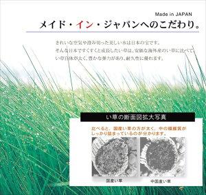 ラグカーペットマットい草中敷ラグ裏張り有り2畳日本製い草オリエンタル柄『DXオーディーン』グリーン約191×191cm()【ポイント10倍】【送料無料】【smtb-f】