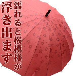 【ポイント10倍】あら不思議 ?濡れるとさくら模様が浮き出ます。 16本骨 さくら傘【ポイント10倍】