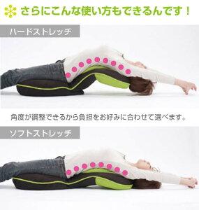 座椅子リクライニング腰痛背筋がGUUUN美姿勢座椅子0070-2058【ポイント10倍】【10P07Nov11】