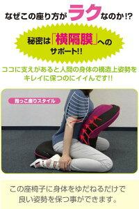 座椅子リクライニング腰痛背筋がGUUUN美姿勢座椅子0070-2058【あす楽対応】【送料無料】【ポイント10倍】