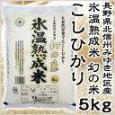 米 日本米 Aランク 産地直送 25年度産 長野県産 氷温熟成米 幻の米 5kg JA直送(代引き不可)【ポイント10倍】