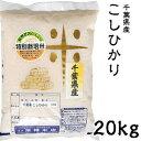米 日本米 Aランク 28年度産 千葉県産 こしひかり 20kg ご注文をいただいてから精米します。【精米無料】【特別栽培米】【新米】【コシヒカリ】(代引き不可)【ポイント10倍】