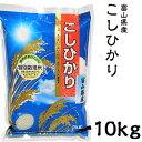 米 日本米 Aランク 28年度産 富山県産 こしひかり 10kg ご注文をいただいてから精米します。【精米無料】【特別栽培米】【こしひかり】【新米】(代引き不可)【ポイント10倍】