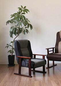 チェアチェアーリクライニングチェアココロリクライニングチェア高座椅子脚付き座椅子()【ポイント10倍】【送料無料】【smtb-f】