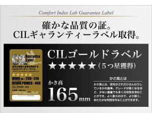 日本製羽毛布団シングル掛けふとん【CILゴールドラベル】ホワイトダックダウン羽毛のためのアレルGプラス5年保証