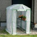 ビニール温室 大型 温室ビッググリーン 工具不要 ビニールハウス フラワーラック OST2-BIG