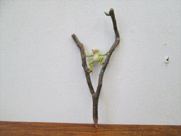 置物 木の枝にカエルが乗ったディスプレイ ディスプレイ雑貨(代引不可)