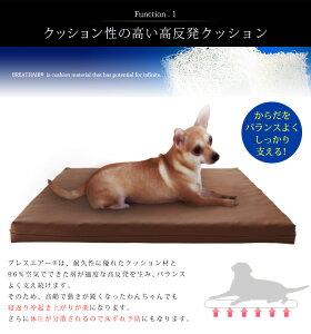 ブレスエアーペット用マットクッション中型犬猫洗える日本製[東洋紡BREATHAIRブレスエアーペットケアマットMサイズ]【送料無料】【smtb-f】
