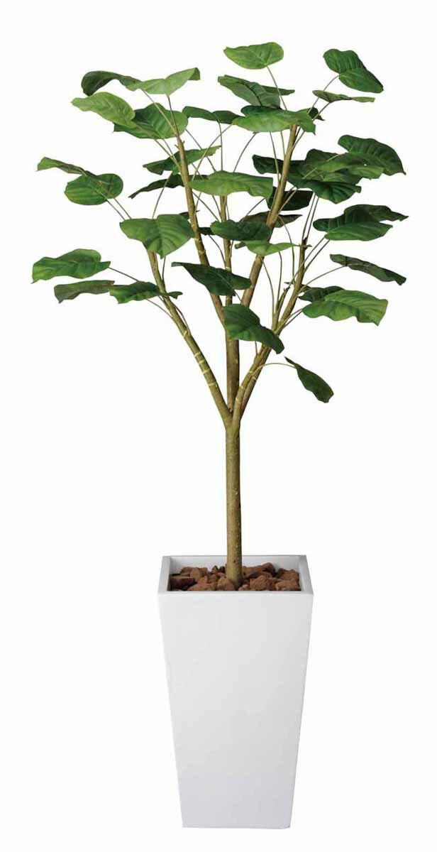 アートグリーン 人工観葉植物 光触媒 光の楽園 ウンベラータW1.8(代引き不可)【S1】:リコメン堂インテリア館