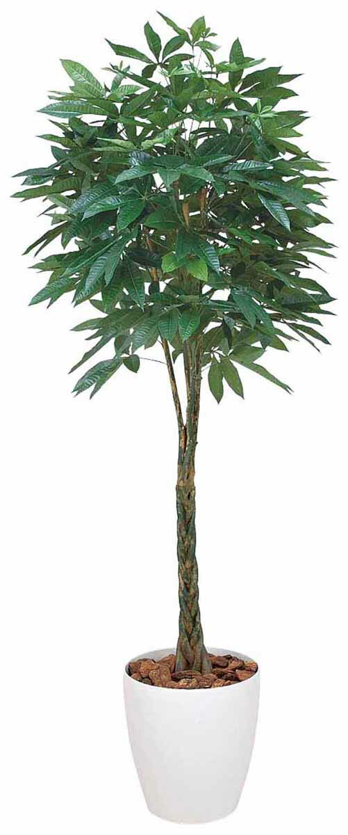 アートグリーン 人工観葉植物 光触媒 光の楽園 パキラ1.6(代引き不可):リコメン堂インテリア館