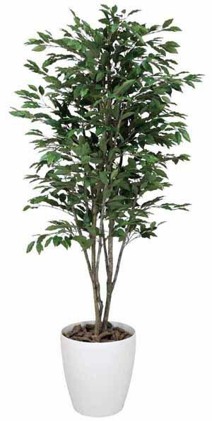 アートグリーン 人工観葉植物 光触媒 光の楽園 ベンジャミンツリー1.6(代引き不可)【S1】:リコメン堂インテリア館