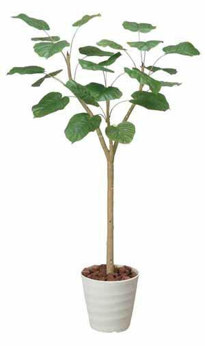 アートグリーン 人工観葉植物 光触媒 光の楽園 ウンベラーダ1.8(代引き不可):リコメン堂インテリア館