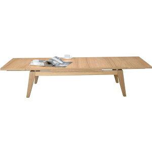 エクステンションテーブル(伸縮自在・伸張式)CPN-102NA【送料無料】