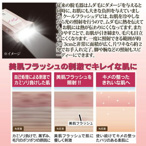 オムニクールフラッシュデピシャンパンゴールド8109211【送料無料】【smtb-f】