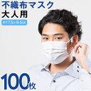 大人用メルトブローン不織布マスク(100枚入り)(代引き不可)