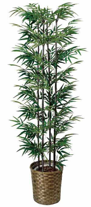 アートグリーン 人工観葉植物 光触媒 光の楽園 黒竹1.65(代引き不可):リコメン堂生活館