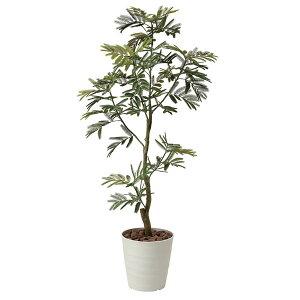 アートフラワー人工観葉植物光触媒光の楽園ねむの木1.55(き)【送料無料】【smtb-F】【RCP】