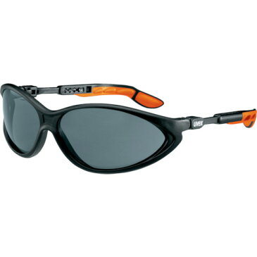 UVEX 二眼型保護メガネ サイブリック 9188076