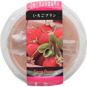 【ケース販売】いちごプリン 150g×24個 ティエラデザート