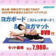 ヨガボード ストレッチボード & ヨガマット DVD付き エアロライフ ヨガマット MR(代引き不可)【送料無料】