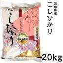 米 日本米 Aランク 30年度産 茨城県産 こしひかり 20kg ご注文をいただいてから精米します。【精米無料】【特別栽培米】【新米】【コシヒカリ】(代引き不可)【S1】