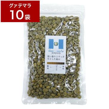 1.2kg 生豆 グァテマラ 120g×10袋 【10袋セット】 珈琲 コーヒー豆 未焙煎 グアテマラ【送料無料】