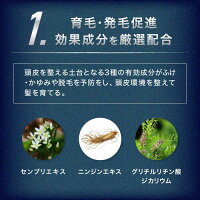 <単品購入>REDEN/育毛剤