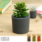 OPASGARTEN(オーパスガルテン)/rootcupビッグルートカップ【観葉植物水だけインテリア壁室内アート水やり多肉植物球根ハーブ】
