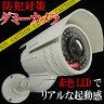 ダミーカメラ 高性能 アーム 防犯対策 LED点滅/ 【送料無料】/###カメラIR-2000★###