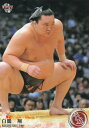 BBM 075 白鵬 翔 大相撲 (レギュラーカード) スポーツトレーディングカード 平成
