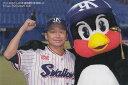 プロ野球チップス2021 第3弾 C-12 ヤクルト:石川雅規 (チェックカードリスト)