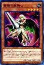 【プレイ用】遊戯王 PP17-JP004 薔薇の聖騎士(日本語版 ノーマル)【中古】