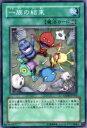 【プレイ用】遊戯王 ANPR-JP054 一族の結束(日本語版 ノーマル)【中古】