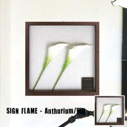 F-Style Frame Anthurium/White(エフスタイルフレーム アンスリウムホワイト)IFF52224 JIG(ジェイアイジー)