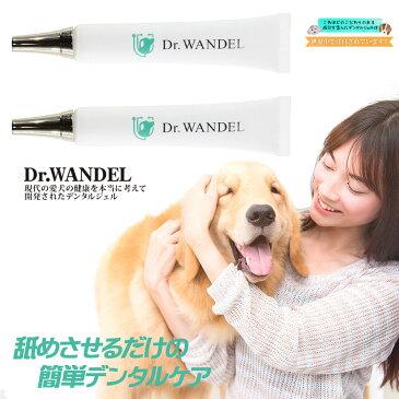 Dr.wandel ドクターワンデル 30g(1ヶ月分) 【2個セット】リボーテ(re:beaute)公式ストア デンタルケアケアジェル 気になる口臭 歯磨き 歯周病対策