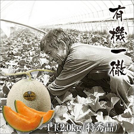坂本正男の有機メロン 特秀品2.0kg
