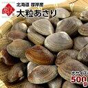 北海道 厚岸産 ごろっと殻付大粒あさり 500g最高鮮度でお届け【砂出し済】みそ汁...
