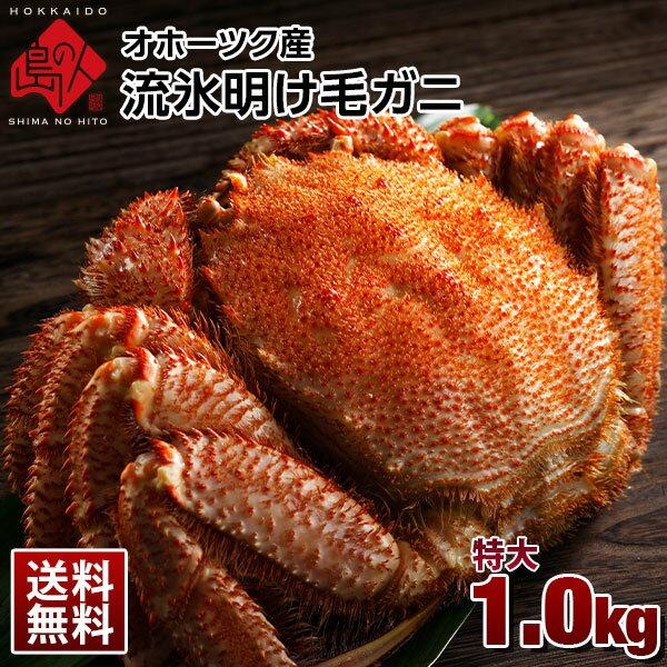 オホーツク産 流氷明け毛蟹 1.0kg