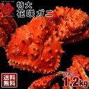 【訳あり限定特価】特大≪真っ赤に輝く幻の蟹≫最高品質 足折れ特大花咲ガニ 1.2kg 送料無料市場に ...