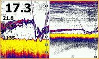 新品■ローランス/LOWRANCE魚群探知機/魚探Elite-7CHIRPHDIL-T■日本語モデル/日本語マニュアル付