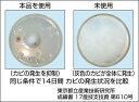 BSKバイオパウダー 住居用除菌消臭剤 5個セット BMK 防カビ 雑菌 ヌメリ 3