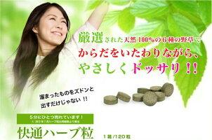 快通ハーブ粒+乳酸菌120粒ナチュラルウェーブ植物性サプリメント日本製ハーブ粒快適かいつう