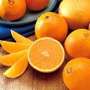 みずみずしいフレッシュなオレンジの香り。オレンジ -Orange-10mlハイグレード アロマクラフト用 フレグランスオイル(手作り石鹸 香水 キャンドル バスボム サシェ / ディフューザー 加湿器 ネブライザー用)